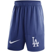 Men's Los Angeles Dodgers Nike Royal Dry Fly Shorts
