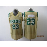 Fighting Irish #23 Lebron James Earth Yellow Basketball Stitched NCAA Jersey