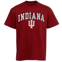 Indiana Hoosiers New Agenda Arch Over Logo T-Shirt Cardinal
