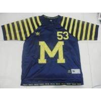 Wolverines #53 Ryan Van Bergen Michigan Blue Under The Lights Stitched NCAA Jersey