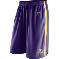 Men's Minnesota Vikings Purple Epic Team Logo Shorts